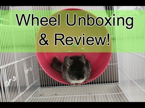 Chinchilla Wheel Unboxing & Review
