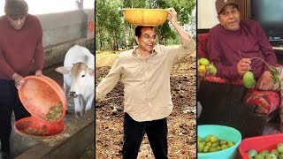 Dharamendra Iron Man Of Bollywood Is Farmer By Heart l Dharmendra Farmhouse in Lonawala