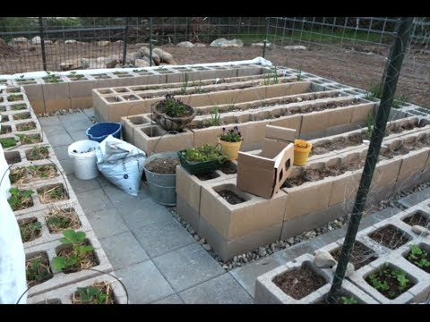 How to build block garden raised bed