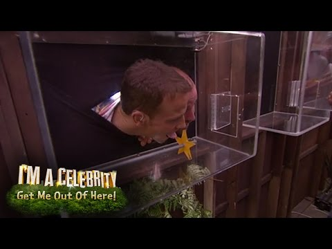 Kendra Wilkinson's Grim Gallery Trial Preview | I'm A Celebrity...Get Me Out Of Here!