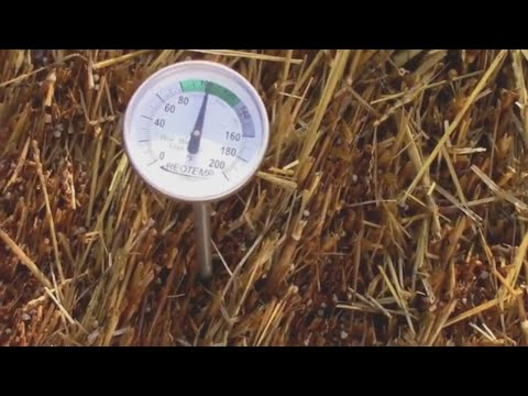 Conditioning My Straw Bales - One is Hot Even in Cold Weather.