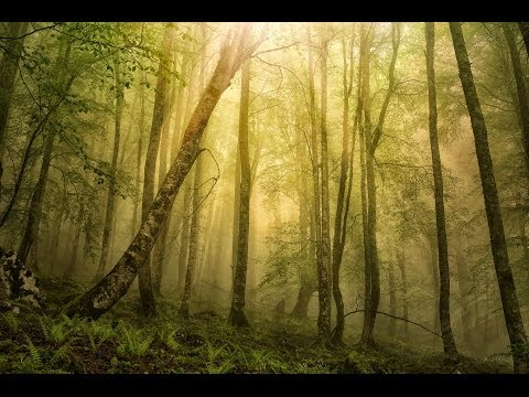 Photoshop cs6 tutorial - Fake sun rays effect