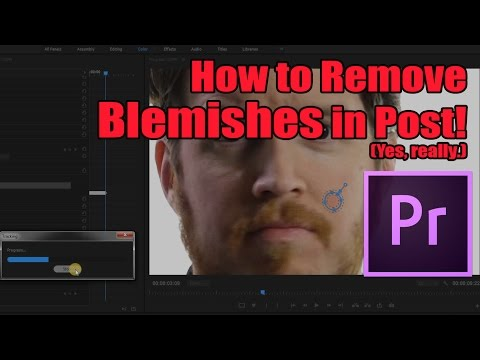 How to Remove Blemishes/Pimples in Premiere (really) - Tip Tuesday: Episode #027