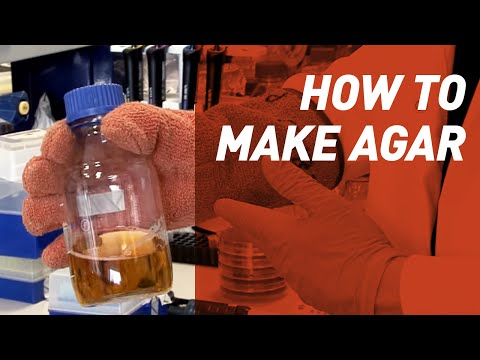 How to make Agar - Singer Instruments