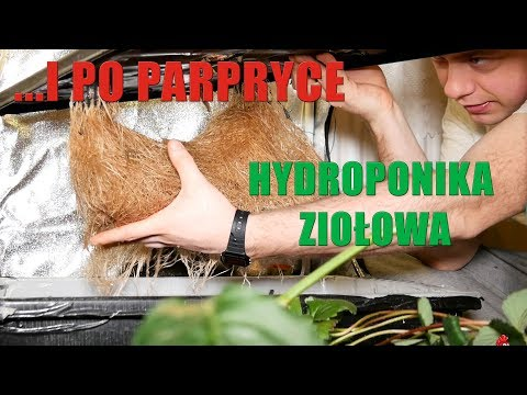 Hydroponika ziołowa domowy nawóz Część 1
