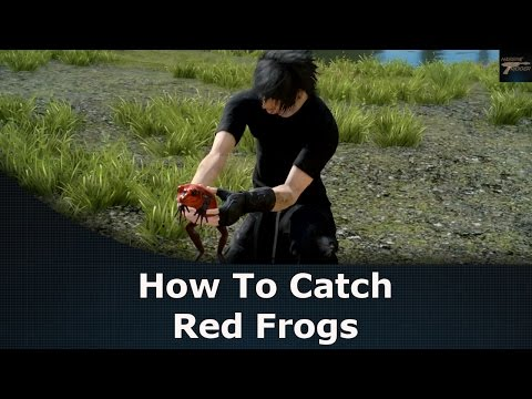 Final Fantasy XV How To Catch Red Frogs The Professors Protege Quest