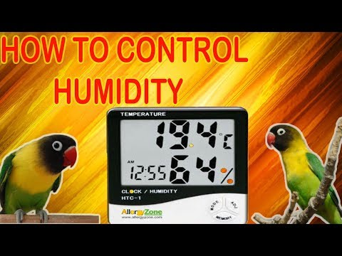 HOW TO CONTROL HUMIDITY IN YOUR SHED | URDU/HINDI