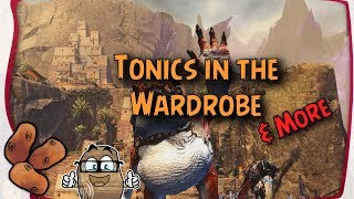 Guild Wars 2 Town Clothes Tonic to Outfit - PakVim net HD