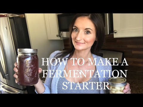 How to make a Fermentation Starter