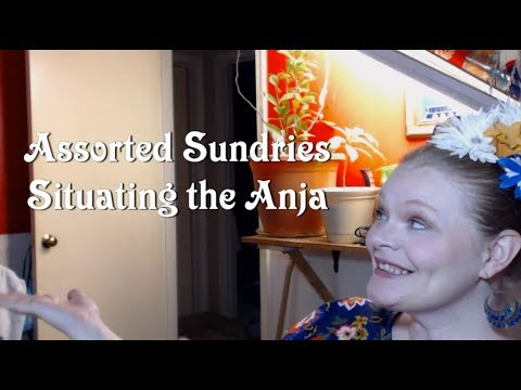 Assorted Sundries: Situating the Anja