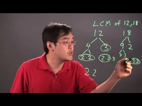 How to Find the Least Common Multiple Using Prime Factorization : Multiplication Tips
