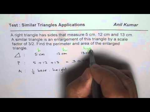 Find Area and Perimeter of Right Triangle with Scale Factor of One and Half