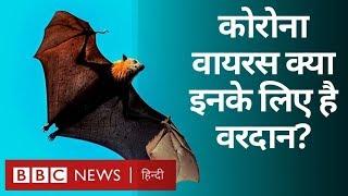 Corona Virus के बढ़ते ख़तरे से किसे फ़ायदा हो सकता है? (BBC Hindi)