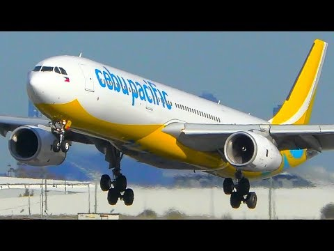 INCREDIBLE Cebu Pacific Airbus A330 CLOSE UP Takeoff & Landing | Melbourne Airport Plane Spotting