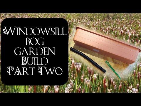 Windowsill Bog Garden Build with Harry (Part 2)
