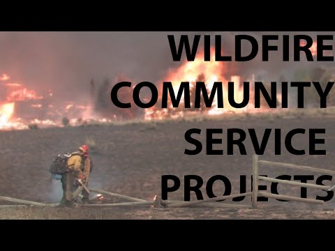 Community service projects to help against wildfire – TakeAction