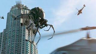 THE BIGGEST SPIDERS In The World
