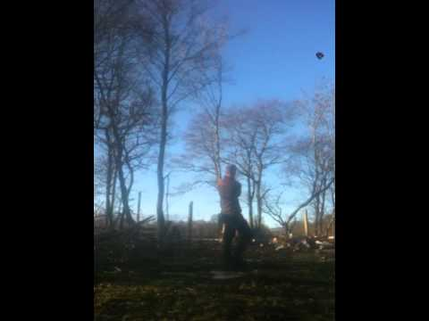how not to chop down a tree.MOV