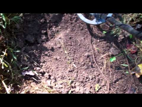 Whats All This Noise? Metal Detecting.
