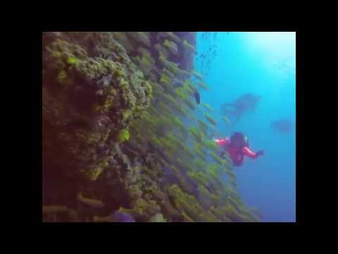 Berakit Wreck Diving with Mira-Tech Diving Services (March 2014)