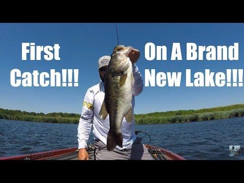Summer Bass Fishing: Exploring A New Lake
