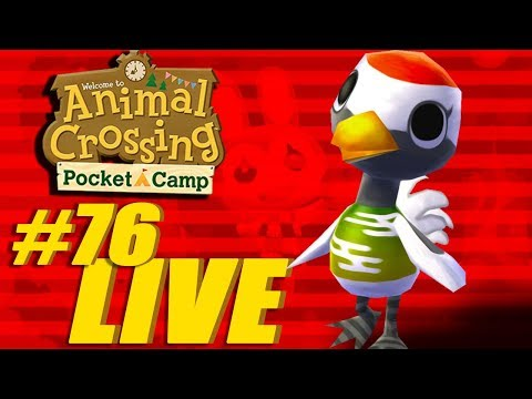 Harmonious Essence Collecting - Animal Crossing: Pocket Camp Live Stream