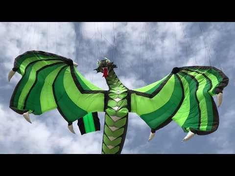 Arabian Kites of Joy