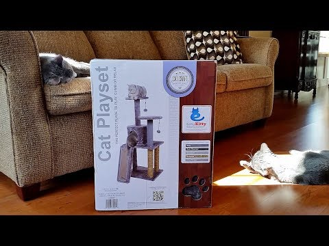 Building a Cat Tree - Cat Playset (Jericho Helps)