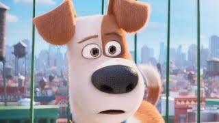 The Secret Life Of Pets | official trailer #3 US (2016) Illumination