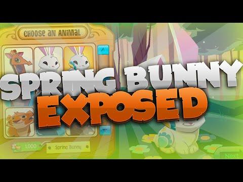 Animal Jam - Spring Bunny EXPOSED!