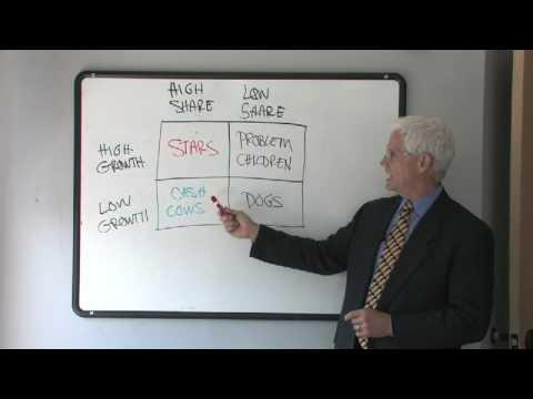 Business Plan Tips : Business Growth Share Matrix