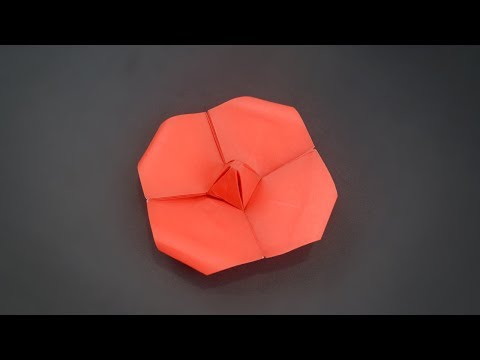 Origami: Poppy Flower - Instruction in English (BR)