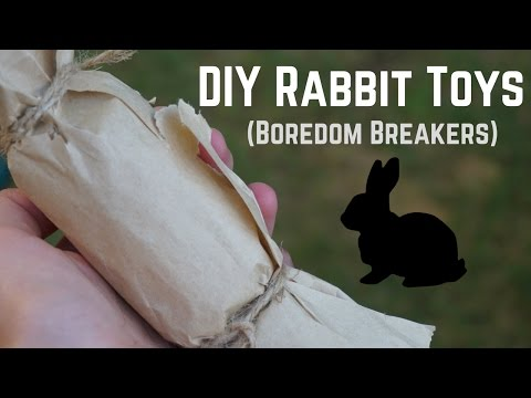 DIY RABBIT TOYS (boredom breakers)