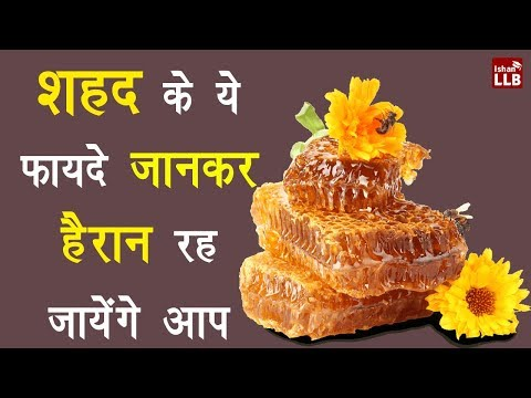 Honey and Milk Surprising Benefits in Hindi | By Ishan