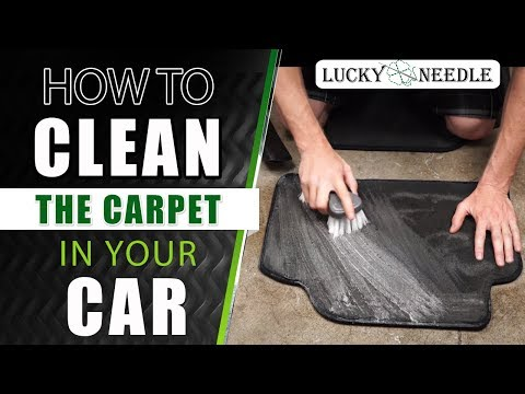 How To Clean The Carpet In Your Car