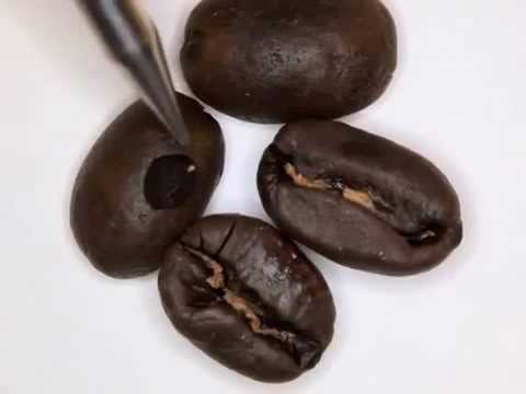 ▶ Coffee Roasting Basics   Color Changes