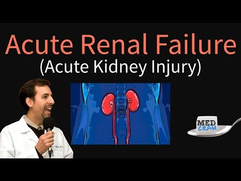 Acute Kidney Injury / Acute Renal Failure Explained Clearly - BUN Creatinine Ratio