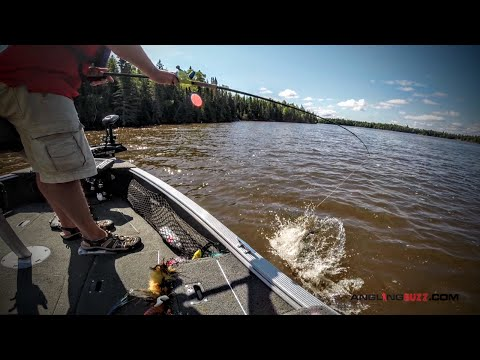 Top Musky Lures for the Summer Months