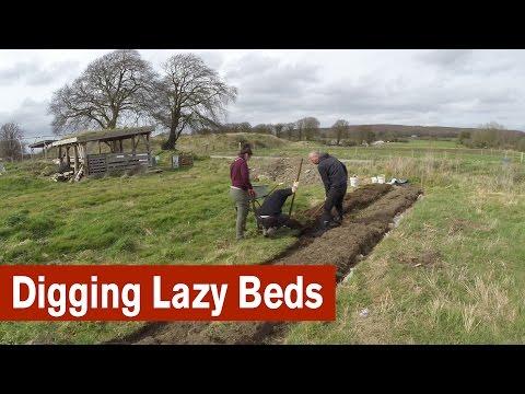 Digging Lazy Beds to Start a Garden