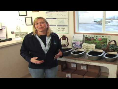 Turning Organics and Green Waste Into Gardening Gold Compost