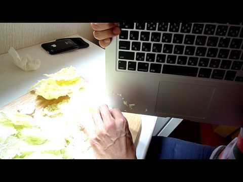 MacBookAirで白菜を調理する。【Chinese cabbage is cut with MacBookAir. 】(2)