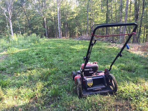 No Fancy Equipment? No Problem: Maintaining food plots without a tractor