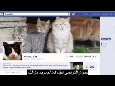 Facebook Fraud arabic