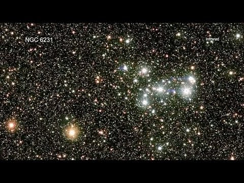 NGC 6231: A Young Star Cluster Full of Sun-like Stars