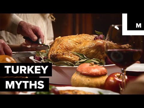 Butterball Expert Reveal 5 Myths About Making Turkey