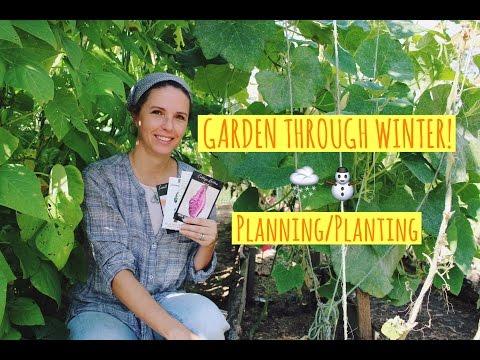 PLANTING OUR WINTER GARDEN!