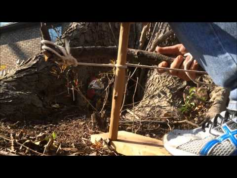 Making Fire with a Bow Drill