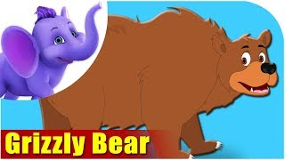 Animal Songs for kids | Grizzly Bear Song