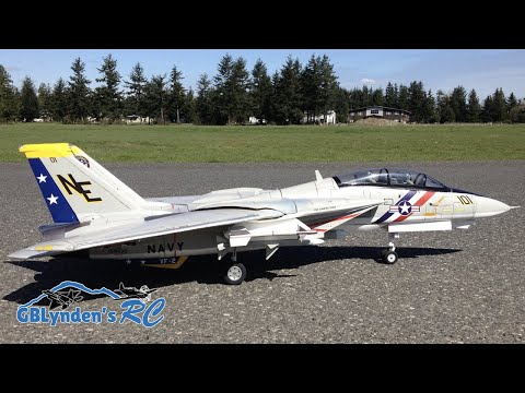 RC Jet Flight Demo - Freewing F-14 Tomcat Twin 80mm EDF Jet Sunny Day Flight
