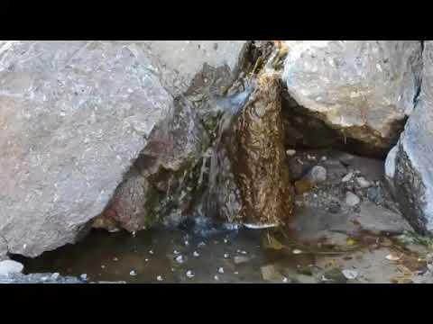 Bailey Spring - Big Bend National Park
